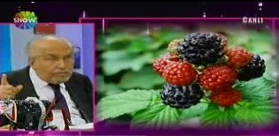 Prof.Dr. Erkan Topuz