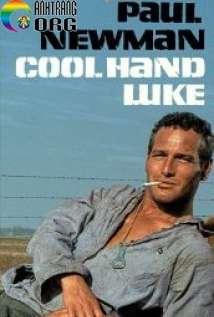 KE1BABB-TrC6A1-TrC3A1o-Cool-Hand-Luke